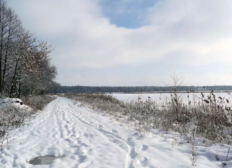 dzialka_zima_sadurscy