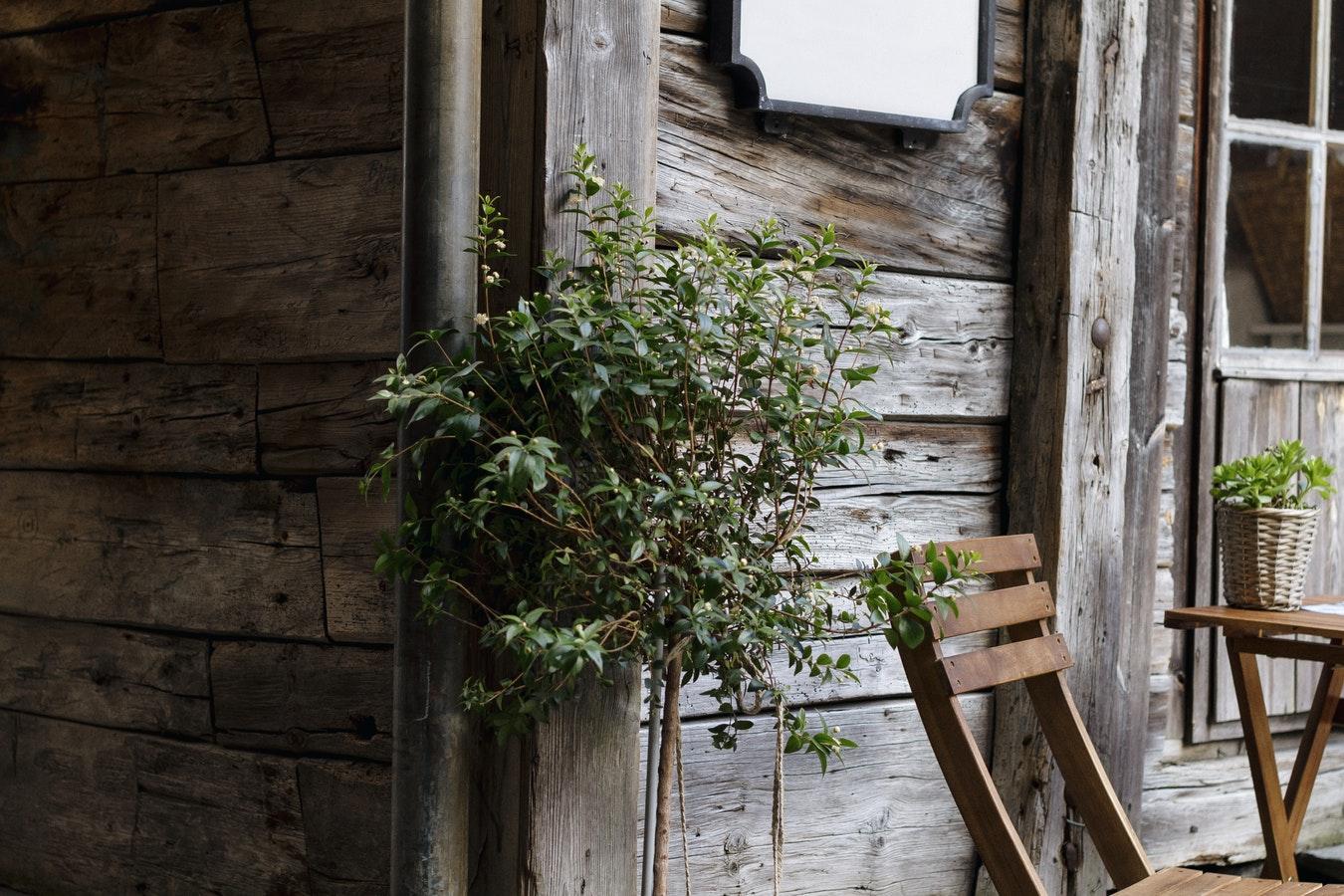Marzy Ci się dom z drewna, Oto wady i zalety